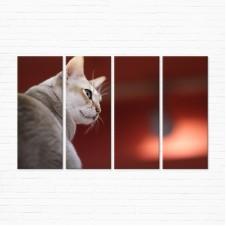 Модульная картина - Сингапурская Кошка