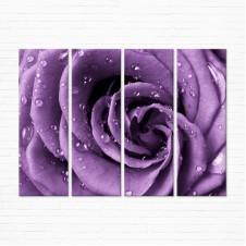Модульная картина - Фиолетовая Роза