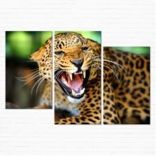 Модульная картина - Леопард